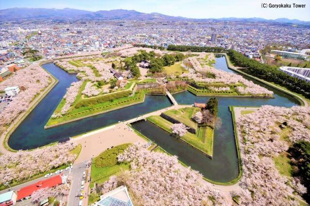 北海道值得一訪的 觀賞櫻花&芝櫻景點9選