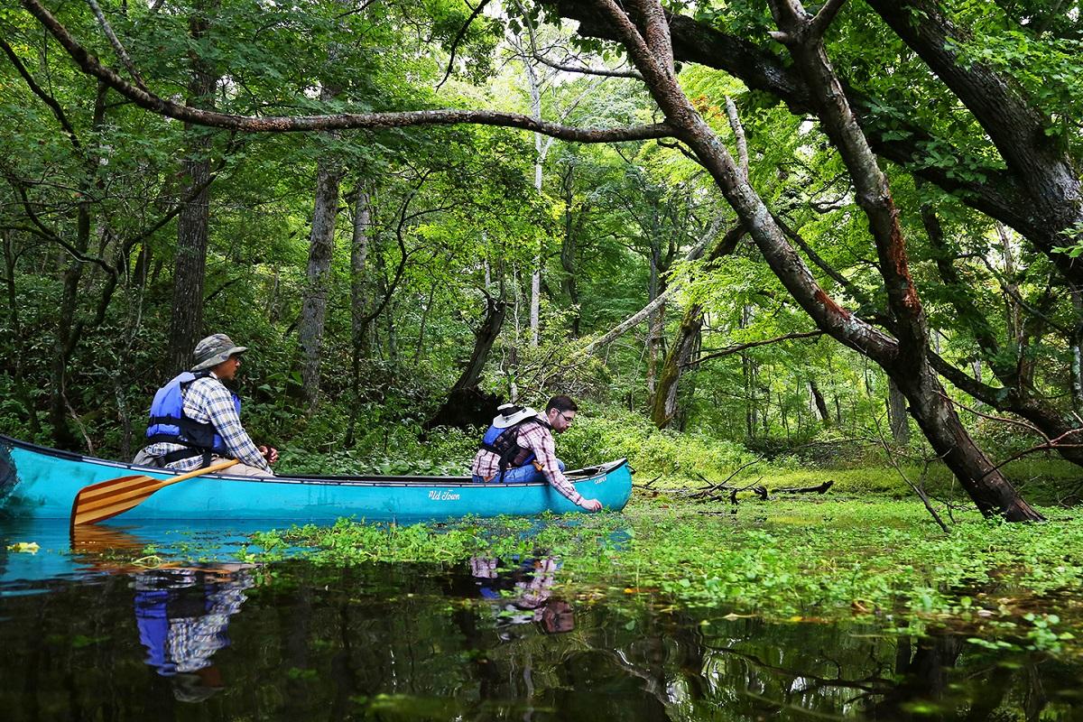 乘皮划艇享受釧路濕原:超人氣!只有划船才可前往的「鏡之間」