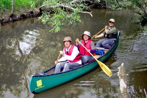 釧路川濕原划獨木舟順流而下體驗行程