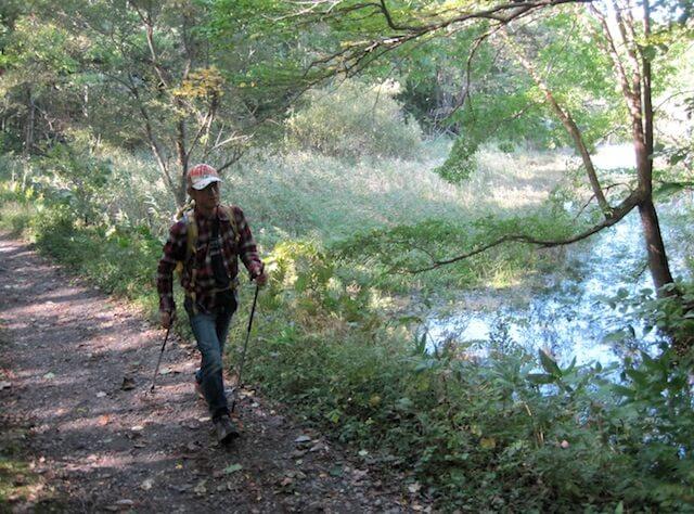 探訪蝦夷貓頭鷹所棲息的森林 北歐式健行之旅