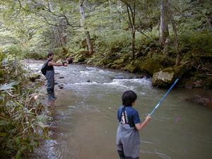 富良野溪流釣魚體驗