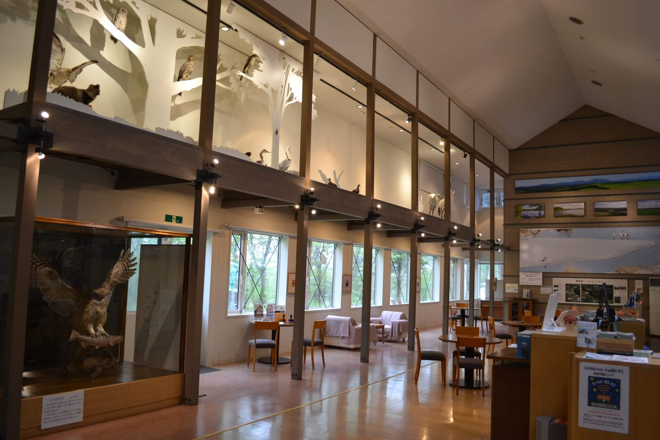 綜覽標茶町的人文與歷史「森林與湖」博物館