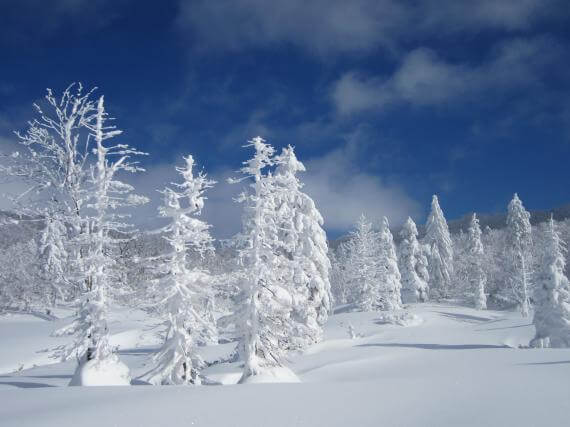 北海道登別溫泉・雪鞋樹冰健行之旅