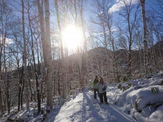 享受玩雪的樂趣!雪中森林雪鞋健行