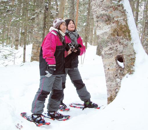 雪鞋雪地散步:為了追尋冬季山野中那片寂靜的銀白色世界