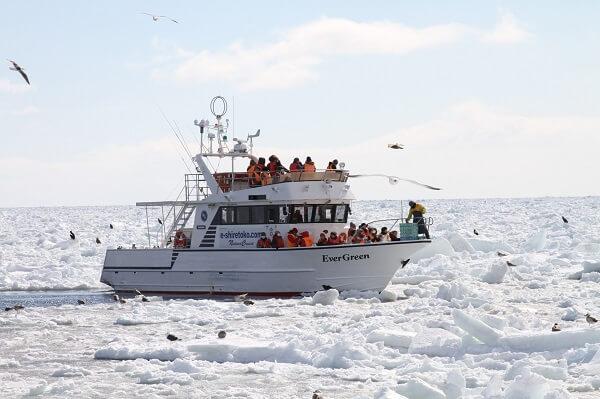 奇特生物觀察!知床破冰船1小時體驗之旅