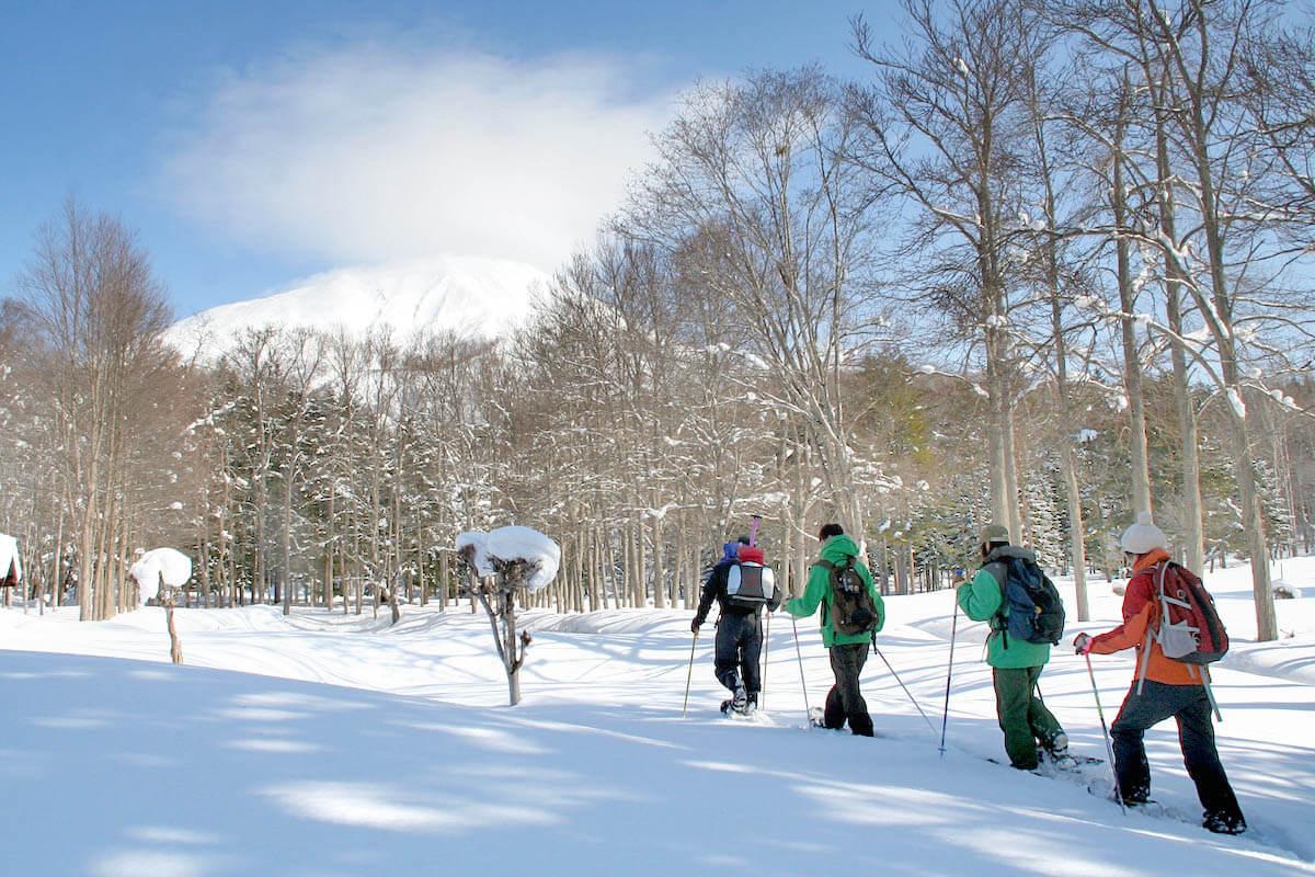 冬季新雪谷森林雪鞋健行之旅半日遊