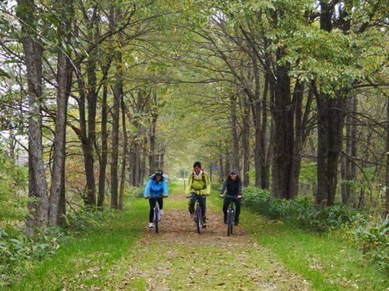 探訪舊狩勝線舊址&森林咖啡廳自行車之旅