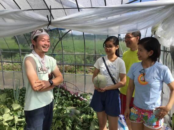 富良野哈蜜瓜和蜜蜂的生態之旅