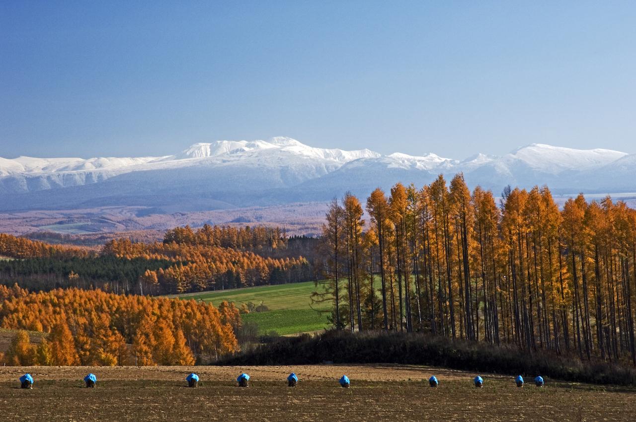 眾神的遊樂園:大雪山國家公園全攻略