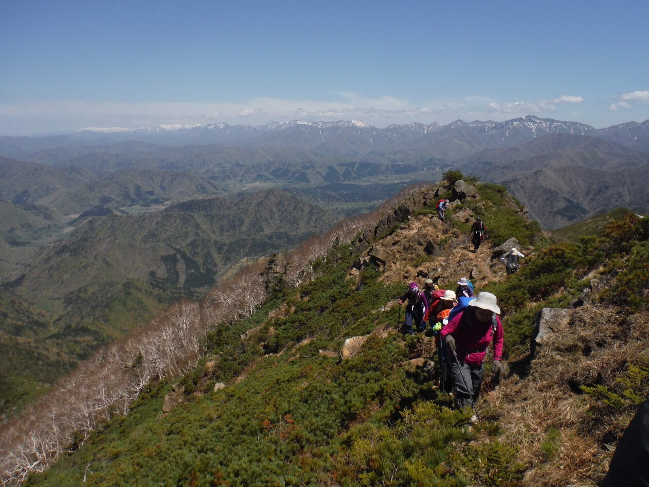 高山植物的寶庫:Apoi岳2日遊