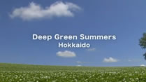 Deep Green Summers