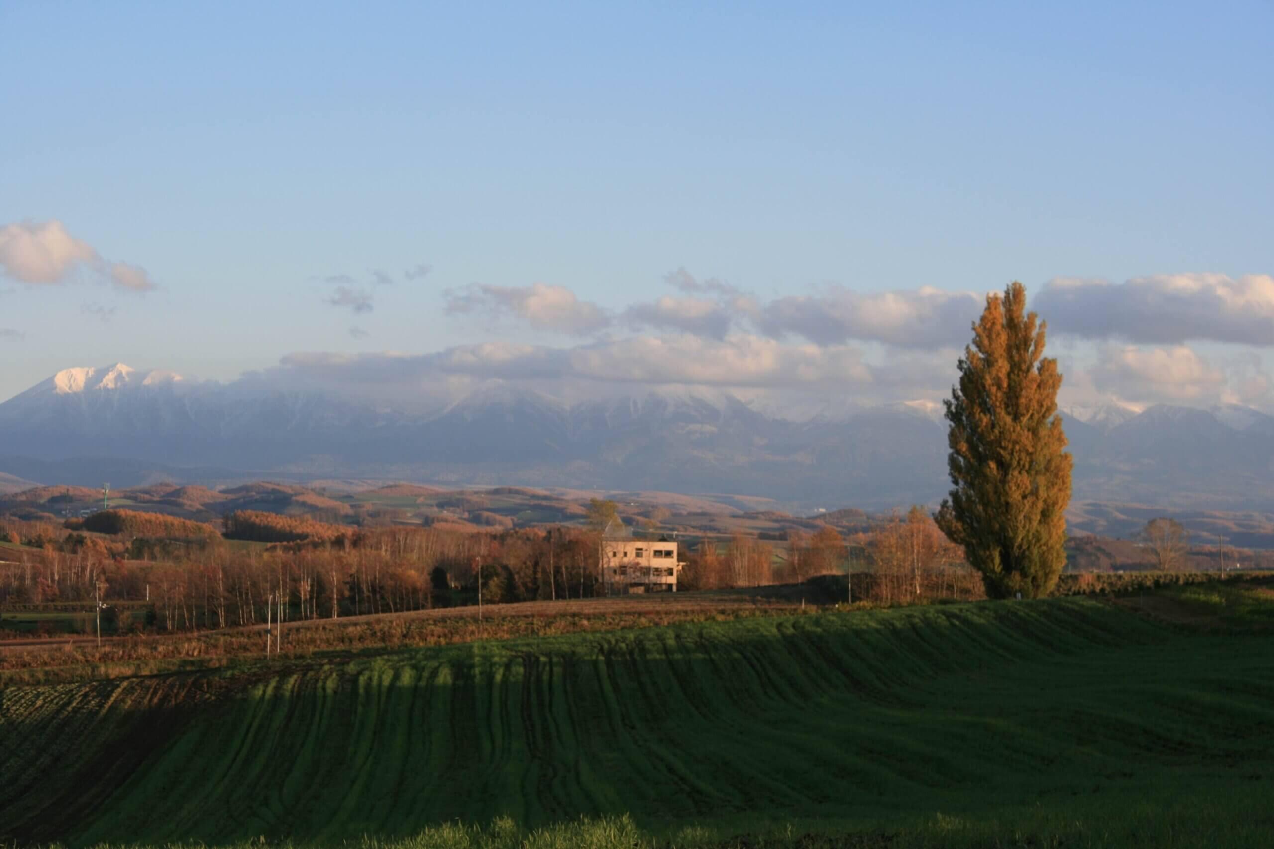 綿延起伏的丘陵地形如拼布般的美麗風景「拼布之路」