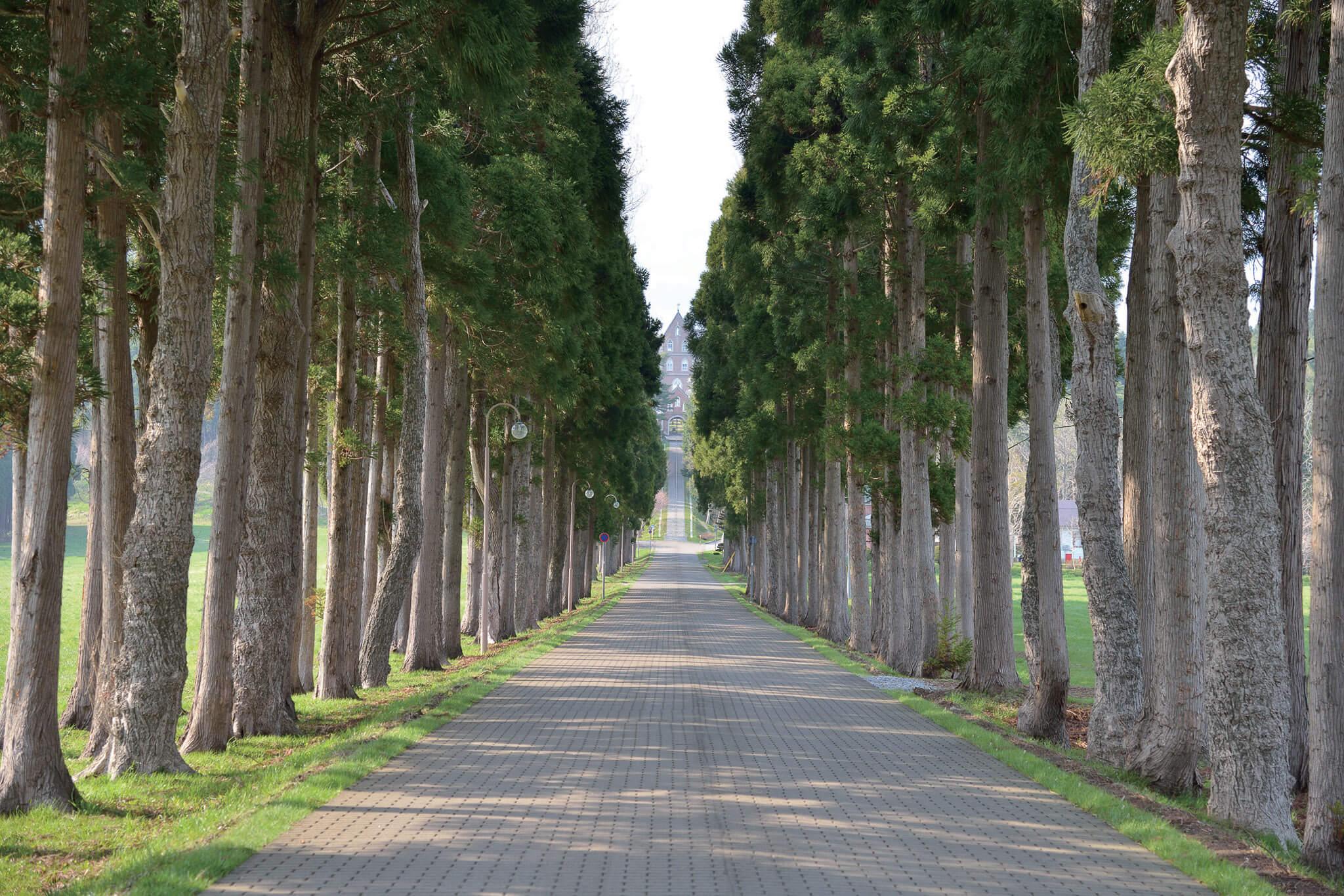 日本第一座男子修道院「特拉普」