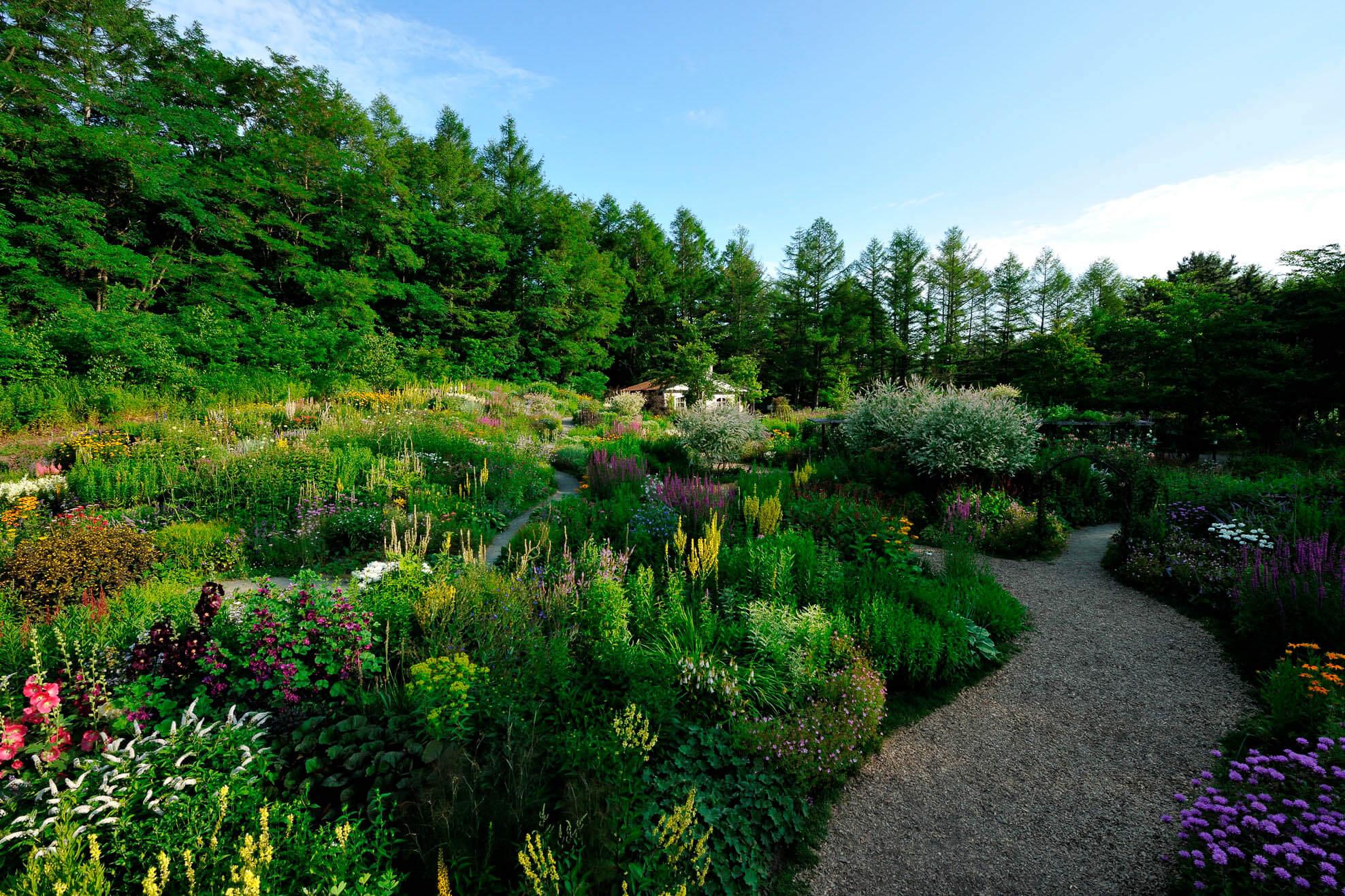 日劇迷們最愛的朝聖景點:風之花園