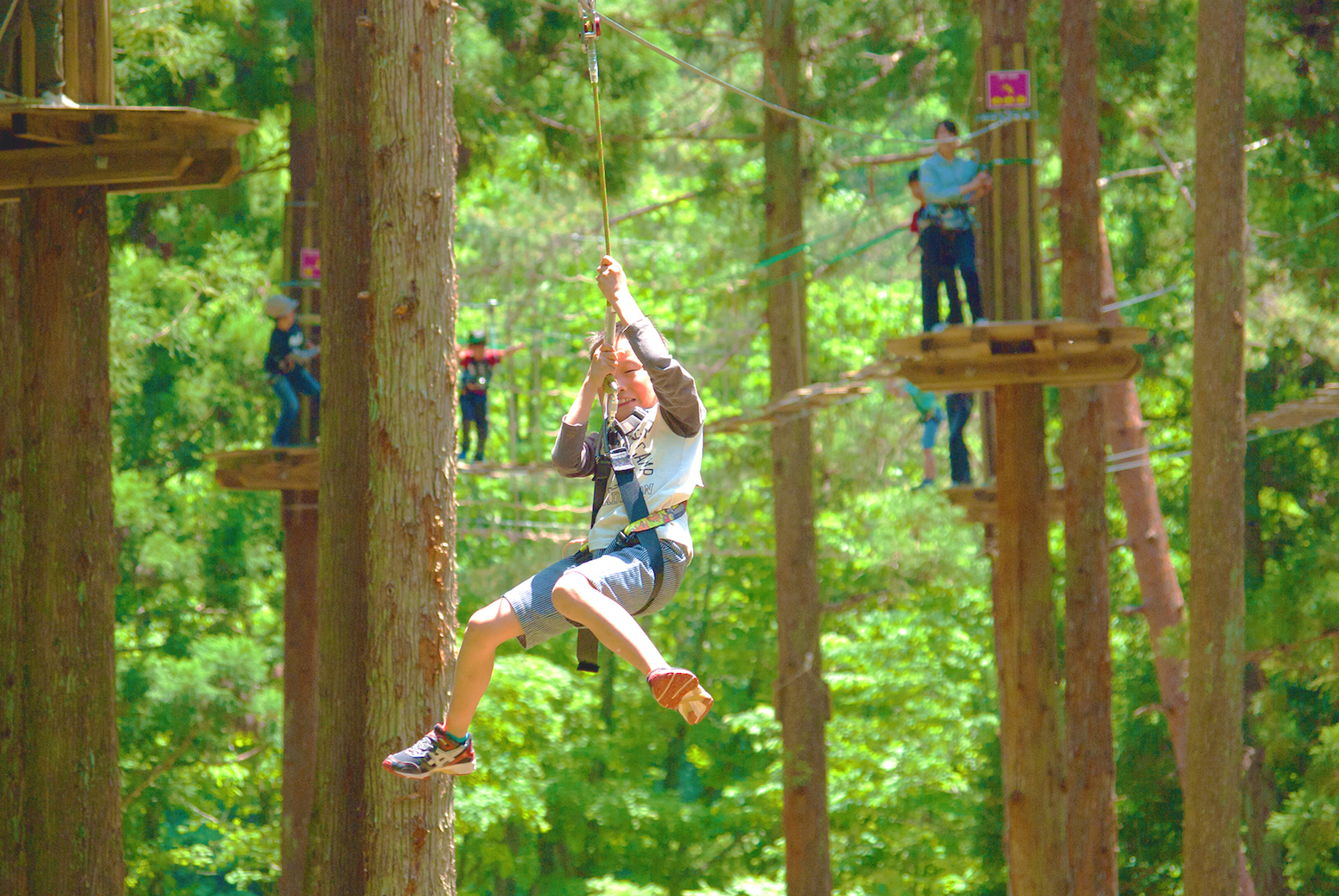 森林冒險‧惠庭:讓大人小孩都著迷的樹上森林冒險!