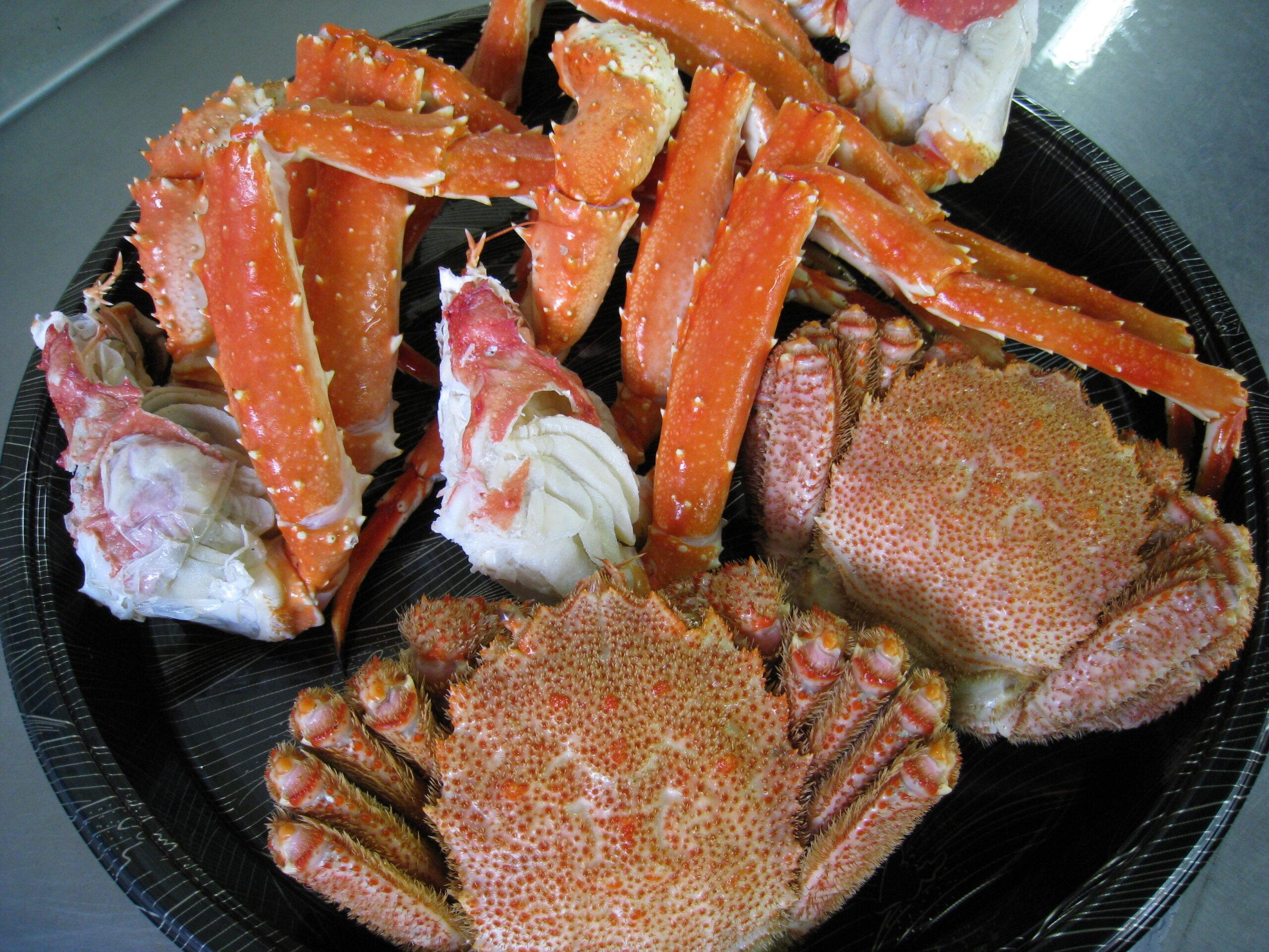 漁師的店 KANE活渡邊水產:隱藏版店家!能品嚐到鄂霍次克海捕撈的美味螃蟹