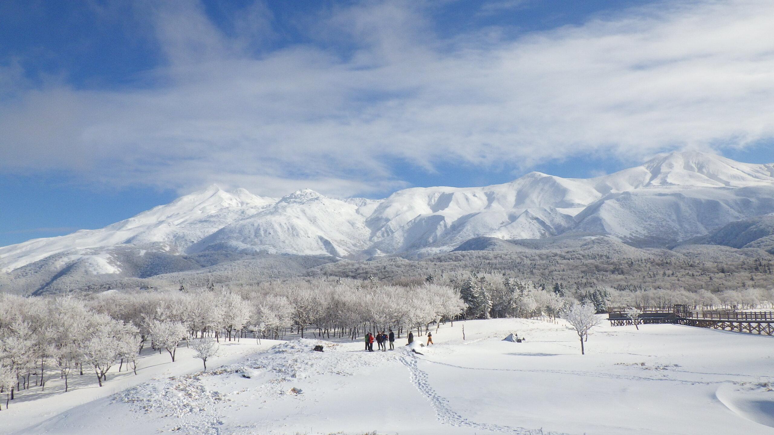 冬季的特別體驗!穿上雪鞋步行在冬季的知床五湖