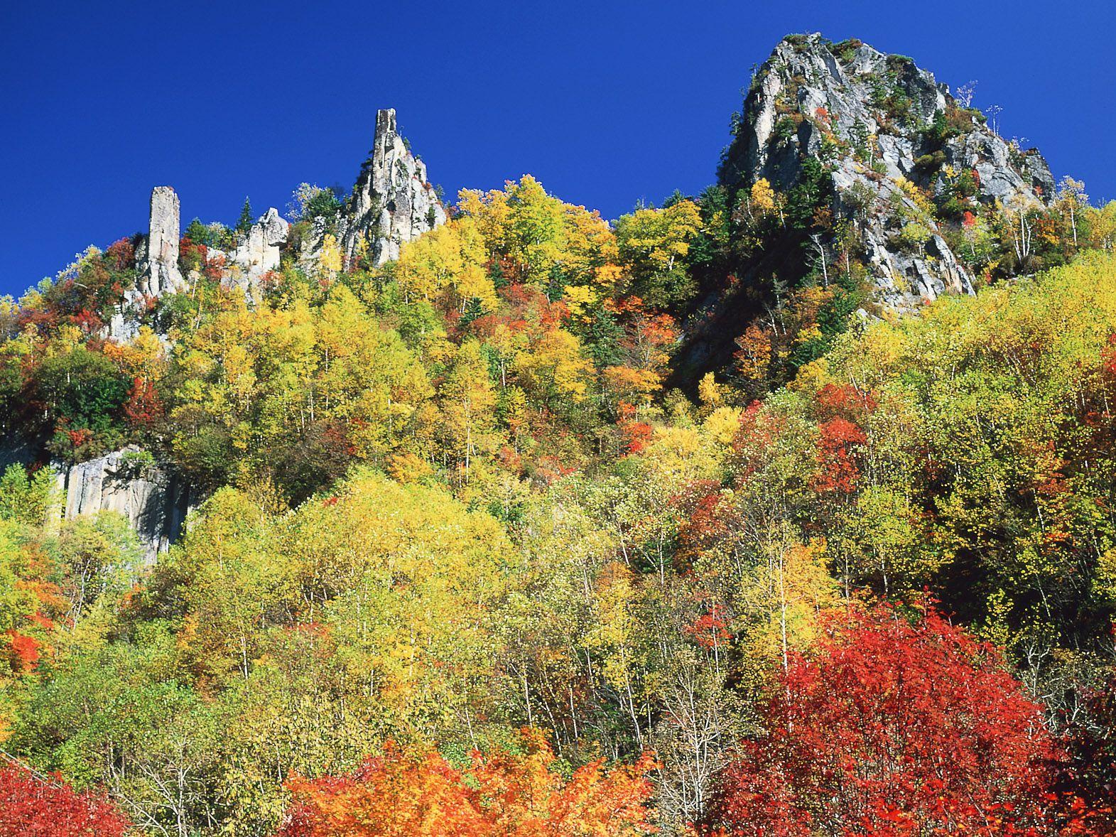 不容錯過!值得一訪的北海道觀賞紅葉景點
