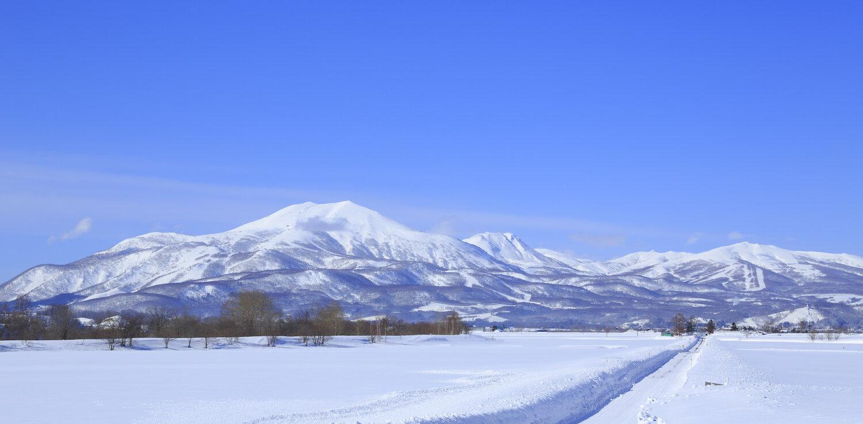 定居新雪谷25年的以上!外國人Shouya Grigg揭開新世谷必訪的魅力