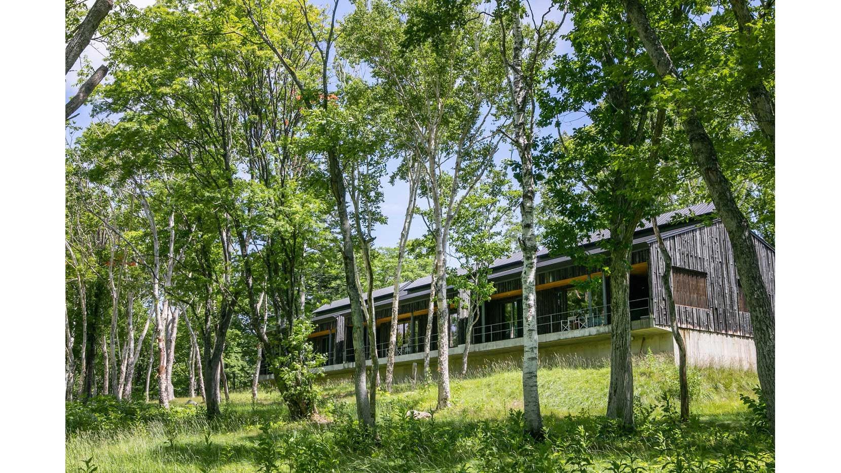 坐忘林是能在雄偉的大自然之中感受四季推移的住宿。