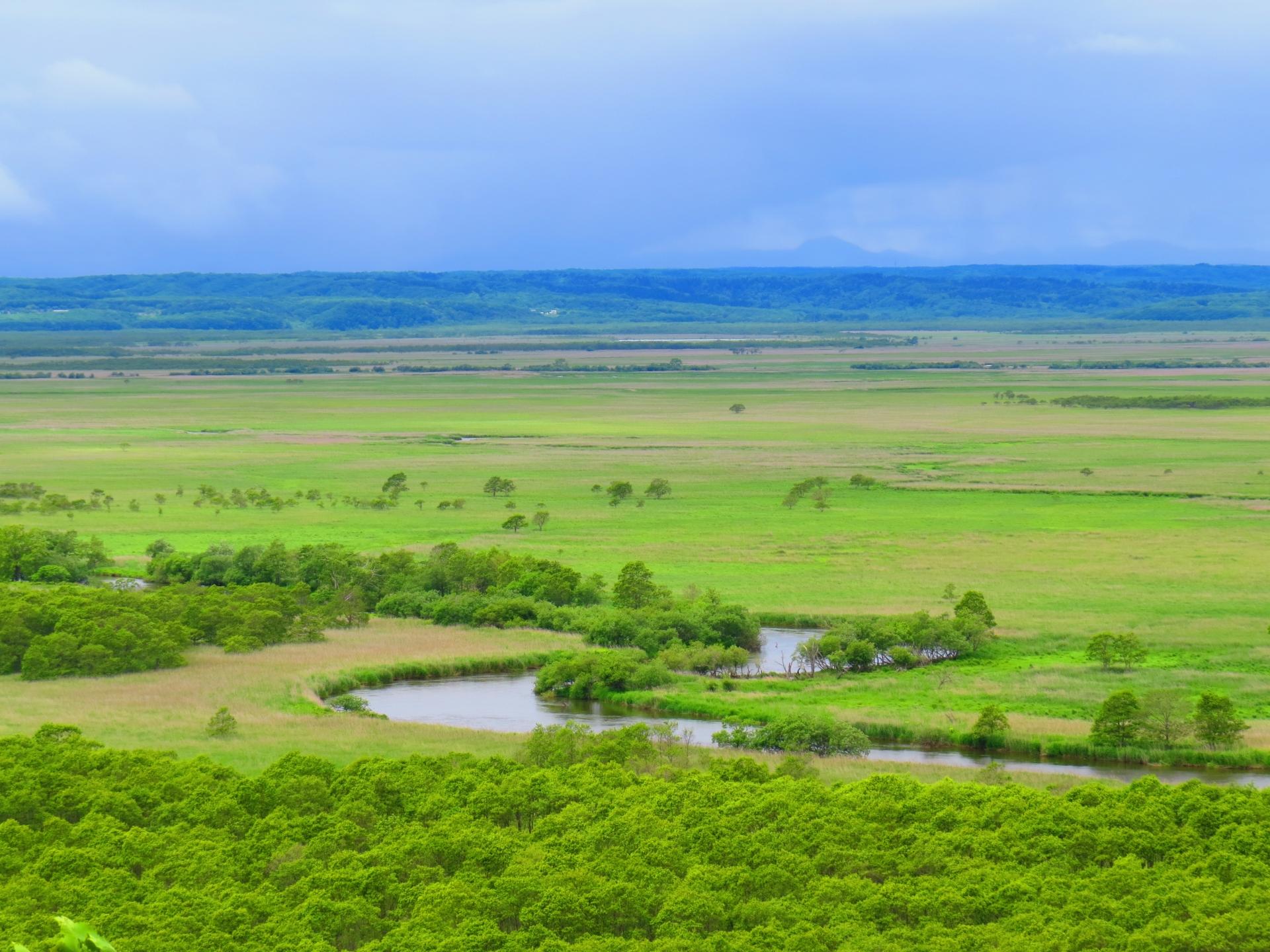 四季都可以看到丹頂鶴的「釧路濕原」